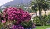 HolAp - Ferienwohnungen, Ferienhäuser im Tessin, Ascona, Locarno, Minusio, Orselina, Brione S.Minusio, Valle Maggia, Valle Verzasca, Gambarogno -  - 56_locarno_parco3