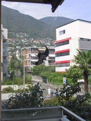 HolAp - Ferienwohnungen, Ferienhäuser im Tessin, Ascona, Locarno, Minusio, Orselina, Brione S.Minusio, Valle Maggia, Valle Verzasca, Gambarogno -  - H6648-79_vista1